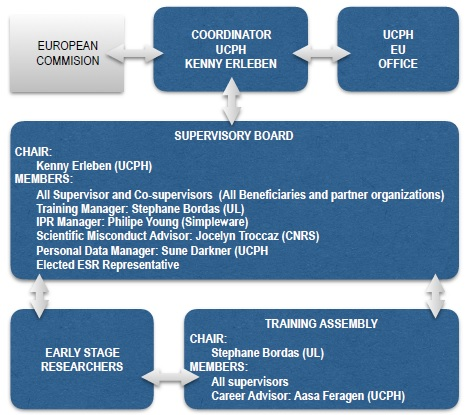 Organisational chart of the management structure